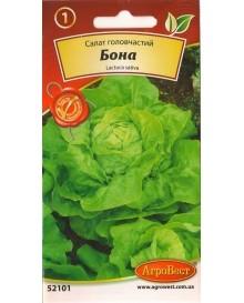 Салат головчастий Бона