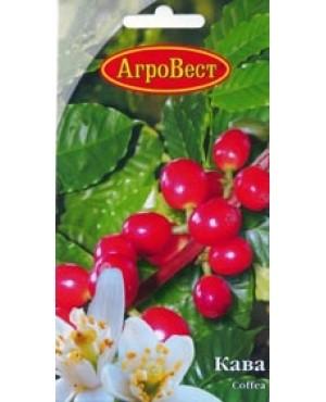 Кава Арабіка (низькоросла)