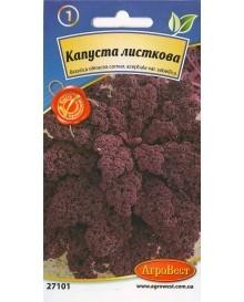 Капуста листкова фіолетова