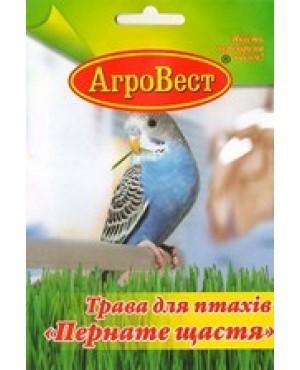 Трава для птахів