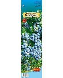 Чорниця садова Блюкроп (CAPERS)