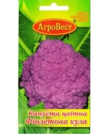 Капуста цвітна Фіолетова куля