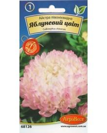 Айстра півонієвидна Яблуневий цвіт