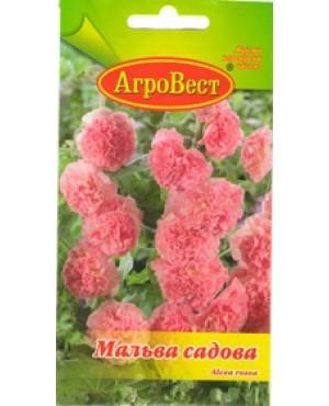 Мальва садова рожева