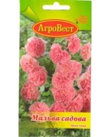 Мальва садовая розовая