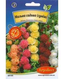 Мальва садова (суміш)