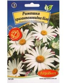 Ромашка хризантемовидна белая