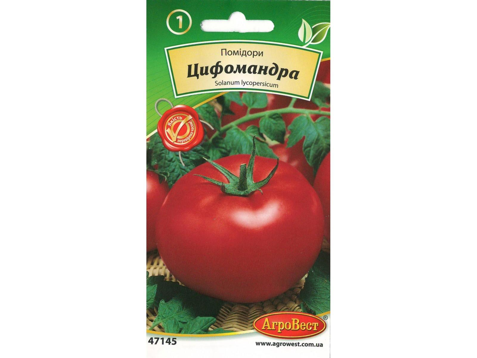 Купить Фиалки в Челябинске недорого/интернет-магазин фиалок