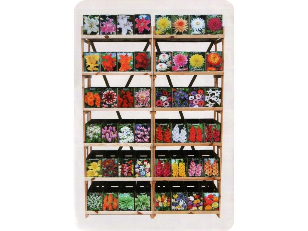 каталог луковичных цветов с