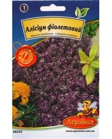 Алиссиум фиолетовый