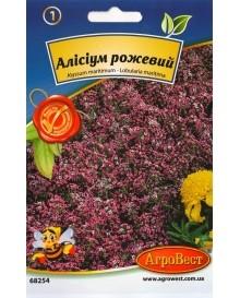 Алісіум рожевий