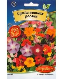 Суміш витких рослин