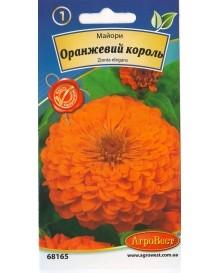 Майори Оранжевий король