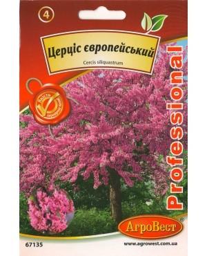 Церціс європейський (Іудине дерево)